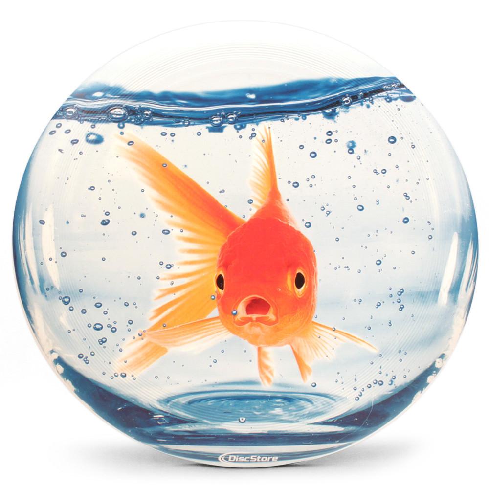 Goldfish Supercolor Ultra-Star