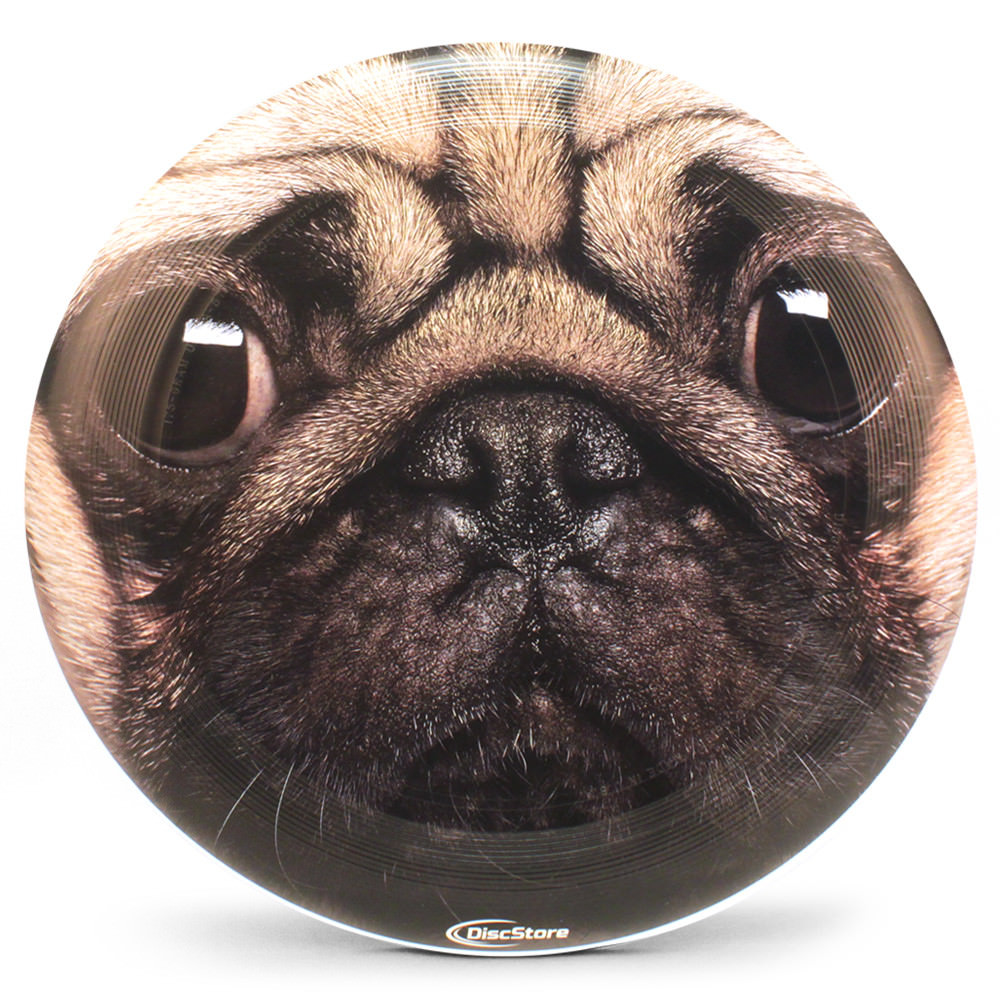 Pug Supercolor Ultra-Star