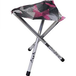 Disc Golf Camp Time Ranger Roll-A-Stool