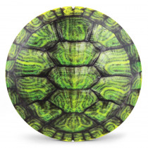 Turtle Shell Supercolor Discraft ESP Buzzz